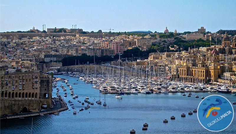 Malta İncelemesi