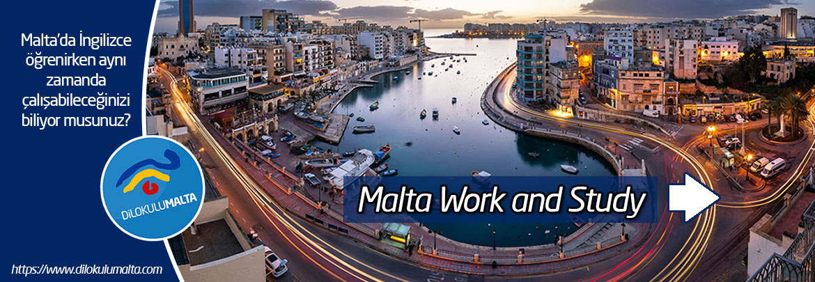 malta work and study